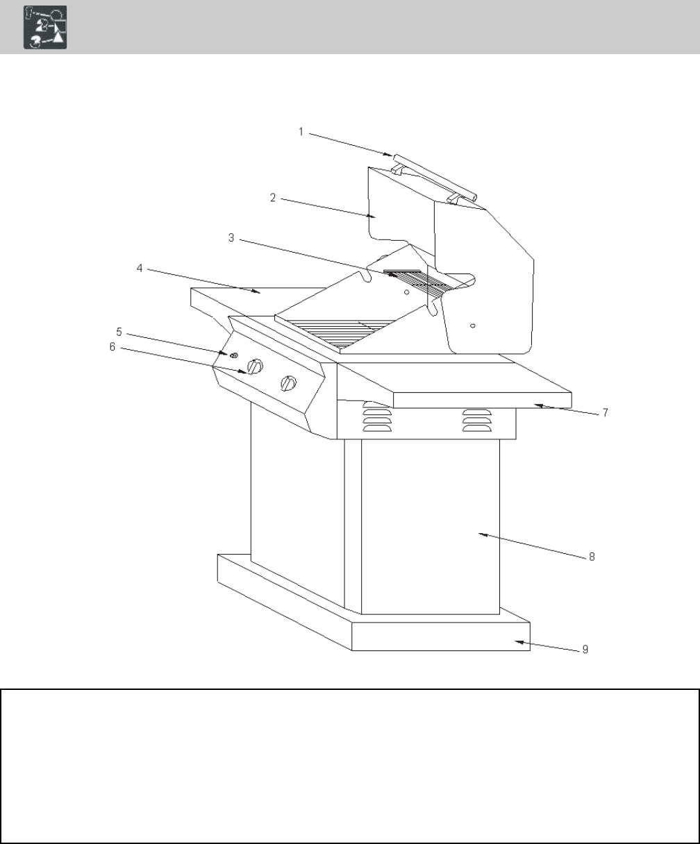 Page 4 of Frigidaire Gas Grill 26