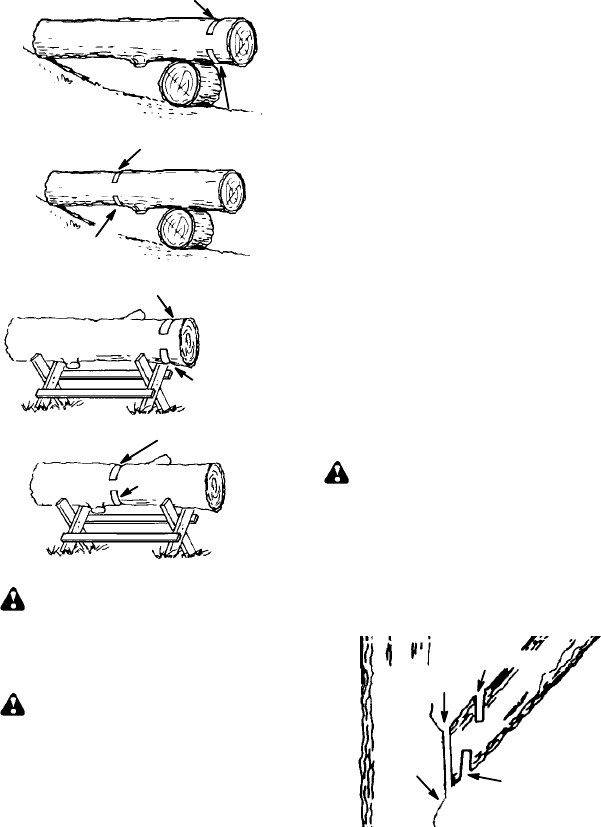 Page 13 of Poulan Chainsaw PP4218 AV User Guide