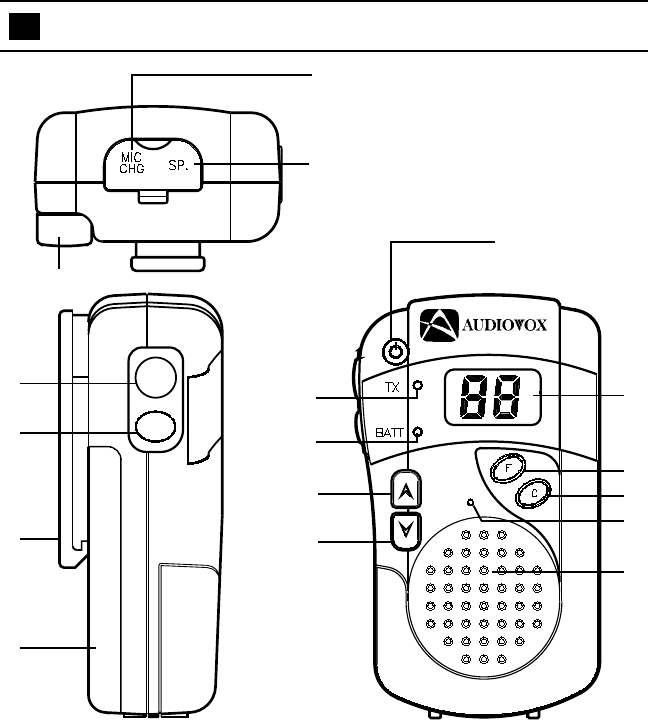 Page 5 of Audiovox Two-Way Radio FR-230 User Guide