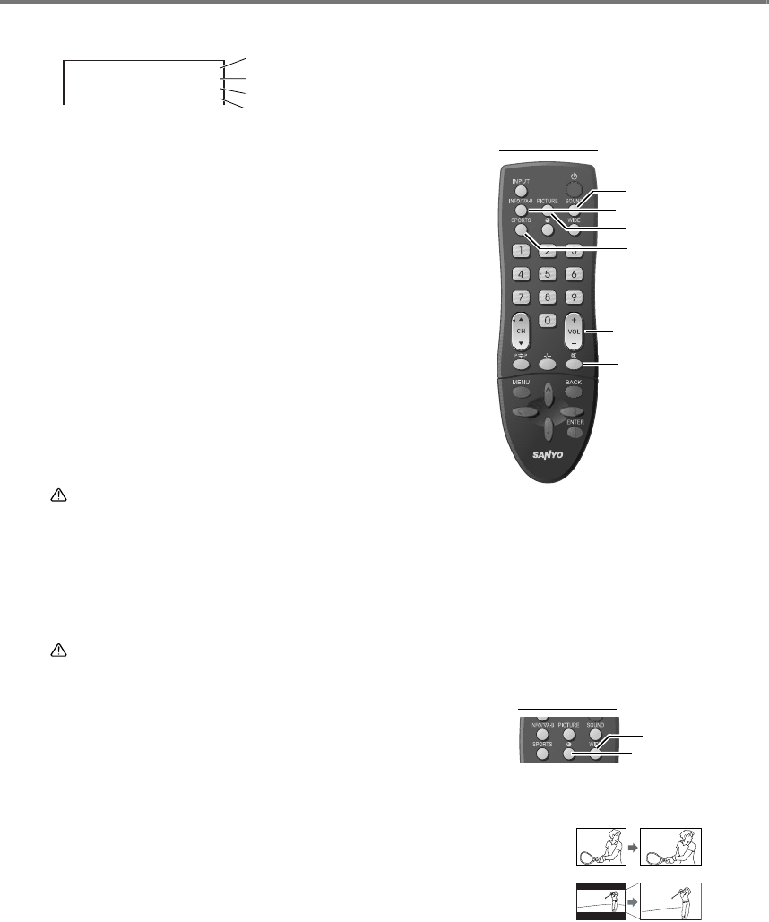 Page 10 of Sanyo Flat Panel Television LCE-24C100F(S) User