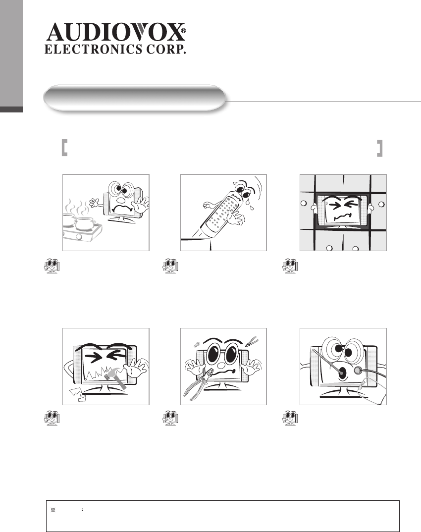 Page 6 of Audiovox Flat Panel Television FP1500 User Guide