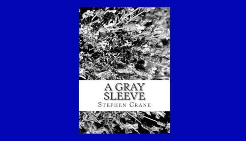 A Gray Sleeve