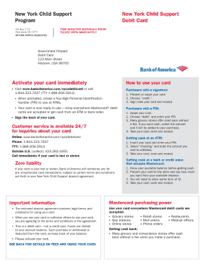 Bankofamerica/nevadachildsupport : bankofamerica/nevadachildsupport, America, Child, Support, FamilyScopes