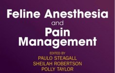 Feline Anesthesia and Pain Management PDF by Paulo Steagall