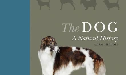 The Dog: A Natural History PDF