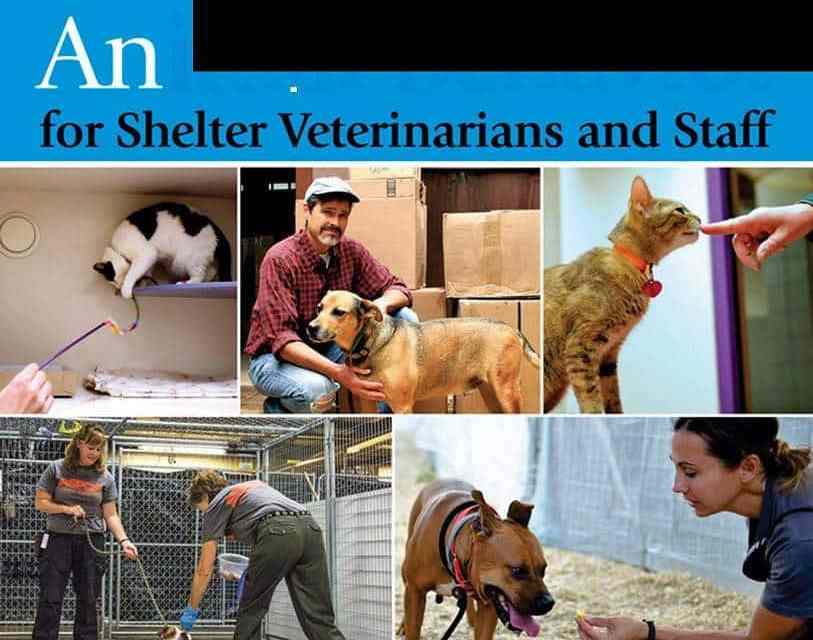 Animal Behavior for Shelter Veterinarians and Staff PDF Download