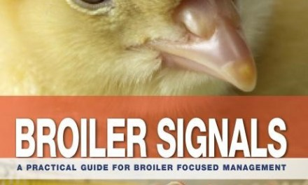 Broiler Signals Download PDF