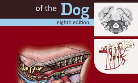 Guide to the Dissection of the Dog 8th Edition PDF