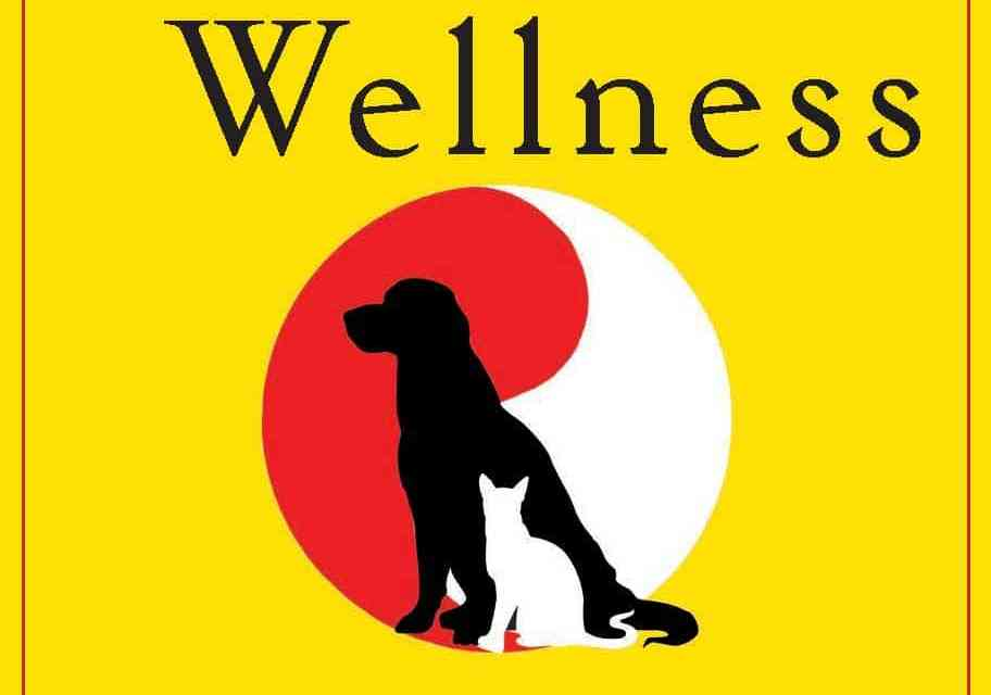Head to Tail Wellness – Western Veterinary Medicine Meets Eastern Wisdom