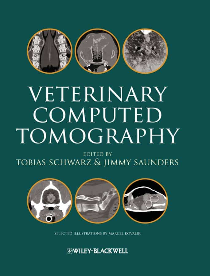 Veterinary Computed Tomography 1st Edition
