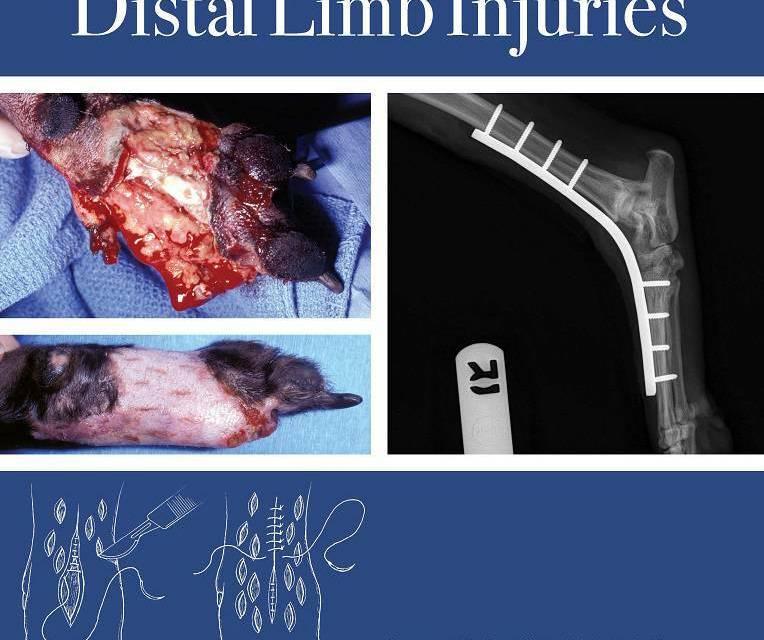 Management of Small Animal Distal Limb Injuries PDF