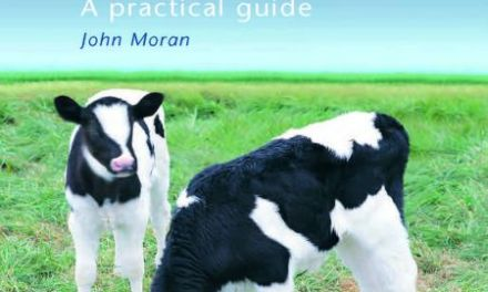 Calf Rearing – A Practical Guide