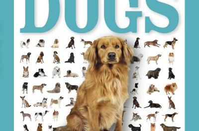 Pocket Genius Dogs Facts at Your Fingertips