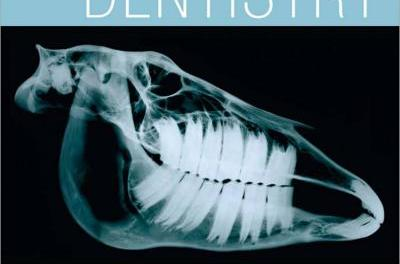 Equine Dentistry 3rd Edition By Jack Easley