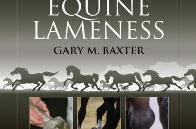 Manual of Equine Lameness 1st Edition
