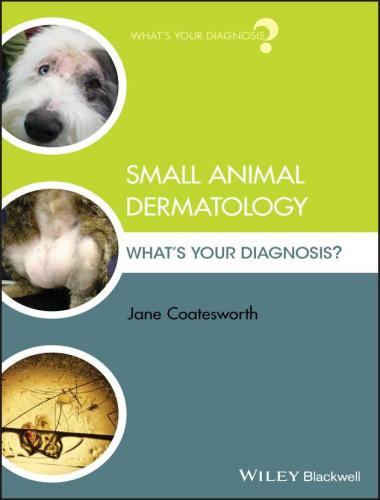 Small animal dermatology what's your diagnosis