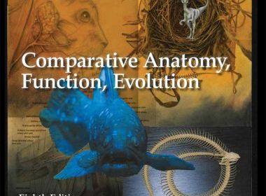 Vertebrates, comparative anatomy, function, evolution, 8th edition