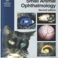 Manual of small animal ophthalmology 2nd edition