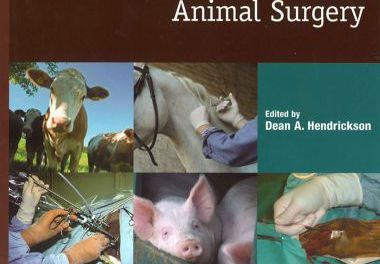 Techniques in Large Animal Surgery 3rd Edition