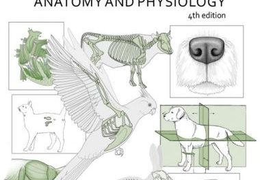 Introduction to Animal and Veterinary Anatomy and Physiology 4th Edition