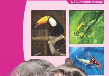 Manual of Exotic Pets – A Foundation Manual 5th Edition