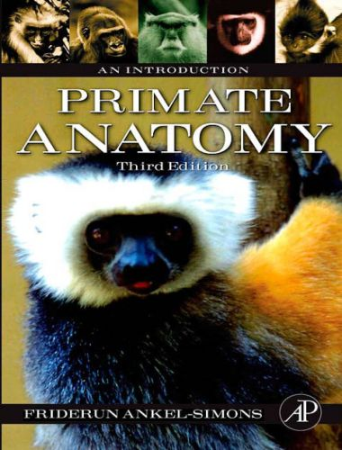 Primate Anatomy An Introduction 3rd Edition
