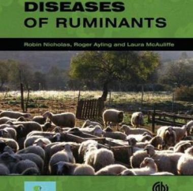 Mycoplasma Diseases of Ruminants
