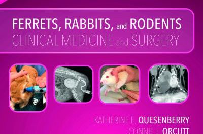 Ferrets, Rabbits, and Rodents: Clinical Medicine and Surgery 4th Edition