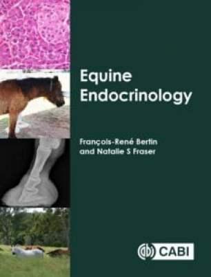 Equine endocrinology