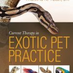 Current Therapy in Exotic Pet Practice 1st Edition