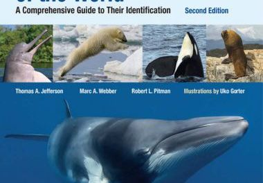 Marine Mammals of the World 2nd Edition