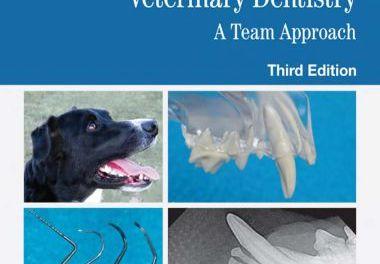 Veterinary Dentistry A Team Approach 3rd Edition