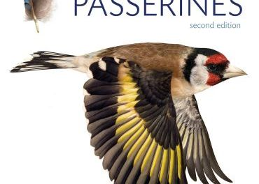 Moult and Ageing of European Passerines 2nd Edition