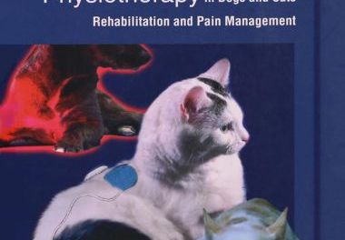 Essential Facts of Physiotherapy in Dogs and Cats, Rehabilitation and Pain Management (Videos Includes)