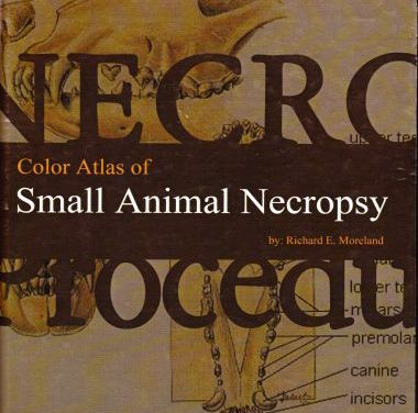 Color Atlas of Small Animal Necropsy