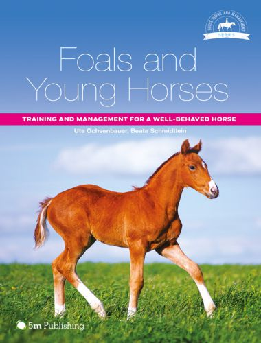 Foals and Young Horses, Training and Management for a Well-behaved Horse