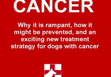Canine Cancer, Why It Is Rampant, How to Prevent It, and an Exciting New Strategy for Treating Dogs With Cancer