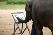 Elephant painting, now the final scen is recognizable