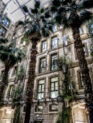 """Inside the old warehouses, now converted to a multi function complex. Some roofed """"squares""""even contain trees such as as these palms"""