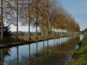 Rural France, near Loire Valley