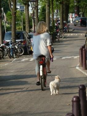 Early walk, Prinsengracht, Amsterdam