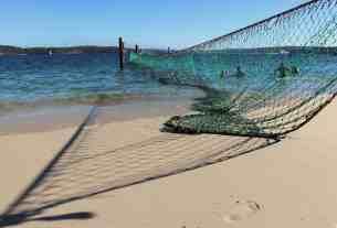 Sydney Harbour- shark net