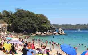 Sydney Harbour- Shark Bay