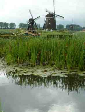 Reflections- the Netherlands