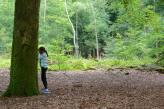 Netherlands forest hide n seek