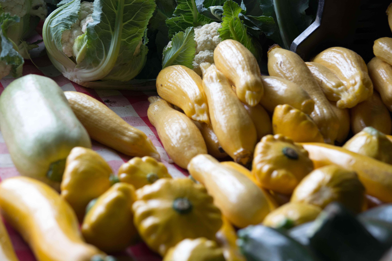 Eating Fresh and Organic–Trusting Fresh!