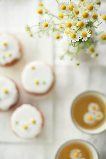 Risultati immagini per eating camomile flowers