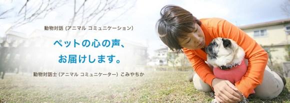 2月4日動物対話セミナーとセッションのイベントを開催します_a0286340_15390134.jpg