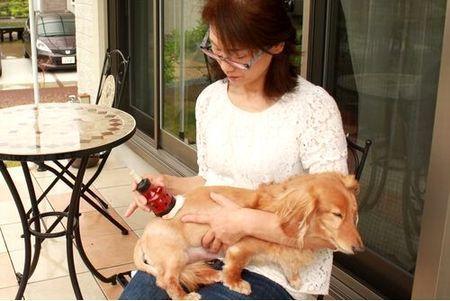 冬の愛犬ケア 愛犬と一緒に温まりましょう!_a0286340_22461524.jpg