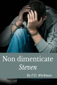 steven IT kindle cover